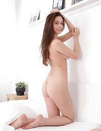 Alisa Amore nude in erotic LIENSI gallery - MetArt.com