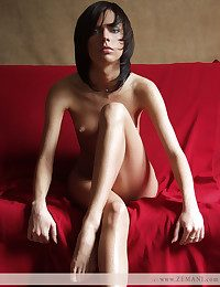 Uncompromisingly beautiful brunet poses nude on be transferred to red coach.