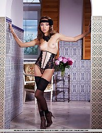 Seductive corset and sexy embroidery stockings and poniard sandals makes one despondent series.