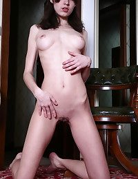 Tall added to skinny brunette akin to her hairy pussy