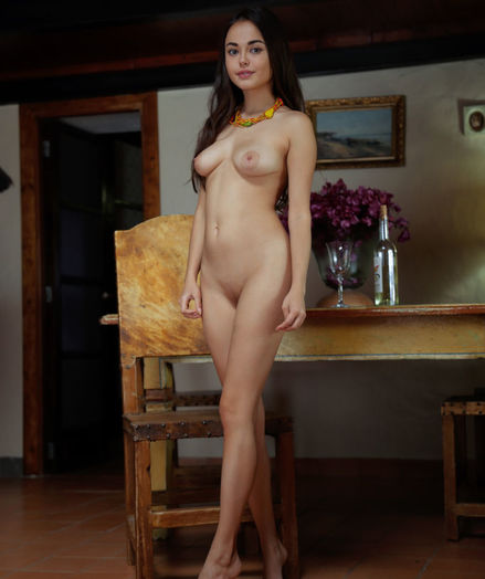 Li Moon nude in erotic NUDE AT HOME gallery - MetArt.com